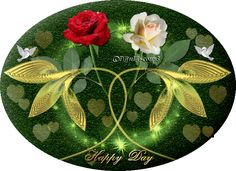 Happy Day Gif, Good Day Gif, Happy Week, Have A Beautiful Day, Beautiful Roses, Devin Art, Flower Images, Mornings, Good Morning