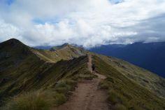 DSC02681 #newzealandwalkingtours  http://newzealandwalkingtours.com