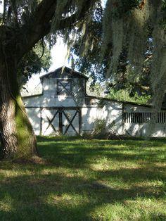 Barn Shadows, 2003, low-country, South Carolina.
