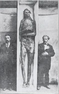 Giant skulls and skeletons of a race of Goliaths have been found on a very regular basis throughout the Midwestern states for more than 100 years. Giants have been found in Minnesota, Iowa, Illinois, Ohio, Kentucky and New York, and their burial sites are similar to the well-known mounds of the Mound Builder people. The spectrum of Mound builder history spans a period of more than 5,000 years (from 3400 BCE to the 16th CE), a period greater than the history of Ancient Egypt and all of its dy…