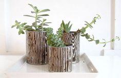 boite-conserve-mini-jardin.jpg