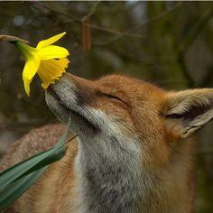Ah, life! Smells so sweet!