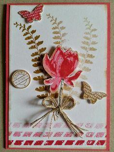 Corina´s Stempel- und Bastelwerkstatt: Noch eine Karte Hier ist ein Set aus der Sale-a-Bration 2015 So froh und aus dem Frühjahr/Sommer Mini Schmetterlingsgruß verarbeitet♥
