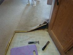 Our RV Experience: Replacing Old Carpet with Flooring in our RV