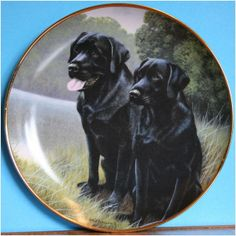 Sporting Companions Labrador Plate by Franklin Mint Painted by Nigel Hemmings on eBid United Kingdom or near offer Mint Paint, Plates For Sale, Bradford Exchange, Franklin Mint, Black Labs, Royal Doulton, The Collector, United Kingdom, Labrador