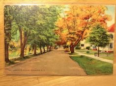 Lafayette-Avenue-Coxsackie-NY-Vintage-Postcard