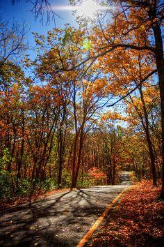 Fall 2011 - Greensfelder Park here in St. Louis County - Missouri