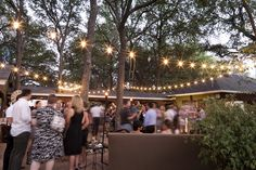 Festoon String Lighting Design by Intelligent Lighting Design - Intelligent Lighting Design - Weddings & Corporate Event Lighting, Audiovisual, & Decor Services for Austin, Houston, Dallas, San Antonio, Nationwide