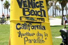 Venice Ca Ultimate Survival Guide How To Avoid Parking Tickets Etc
