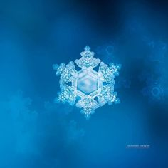 Snow Chrystal #ABrilliantSeason