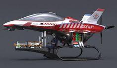 Skyway Air ambulance