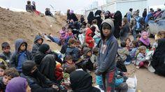 Массовая гибель людей в Мосуле беспокоит ООН https://riafan.ru/680122-massovaya-gibel-lyudei-v-mosule-bespokoit-oon