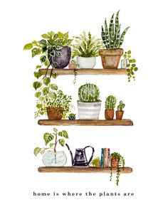 Doodle art 443956475771581991 - Source by jocelynedavy Illustration Inspiration, Kunstjournal Inspiration, Painting Inspiration, Plant Painting, Plant Drawing, Plant Art, Painting Walls, Drawing Art, Watercolor Plants