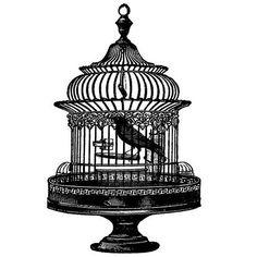 Free Vintage Bird Cage Clip Art | Graphics & Printables ...