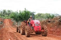 Thema - Palmöl - Rettet den Regenwald e.V.