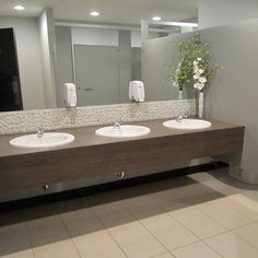 used the other bathroom in the office | office bathrooms