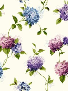 Type: Wallpaper Pattern Name: Hydrangea Trail Pattern Number: KH7070 Book Name: Watercolors Page Number: 1