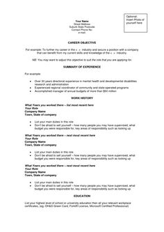 Essay Leadership Example Sample Leaders Career Summary Resume Objective Examples
