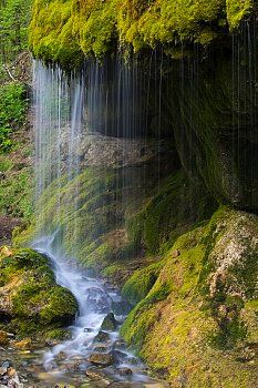 Wutach gorge -Black Forest - Germany