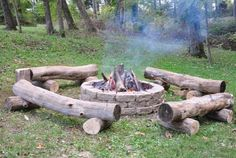 Image result for tree trunks around campfire