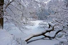 Winter - Mevrouw Schaap