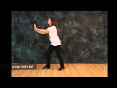 Tai Chi Moves - Free Tai Chi Online Lessons - Moves 5 and 6 Tai Chi Movements, Tai Chi Moves, Learn Tai Chi, Tai Chi Exercise, Tai Chi For Beginners, Thai Chi, Tai Chi Qigong, Online Lessons, Senior Fitness