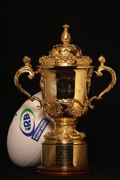 Webb Ellis Cup Rugby Quotes, Rugby Union Teams, Cup Tattoo, All Blacks, New Zealand, Afrikaans, Tattoo Ideas, English, Sports