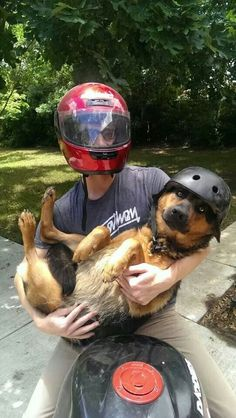 This looks like my Billy. In a helmet!