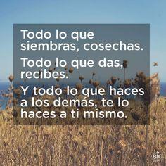 ❝ #FelizMartes - Todo lo que siembras... ❞ ↪ Puedes verlo en: www.proZesa.com