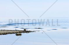 Light Blue - Fototapeter & Tapeter - Photowall