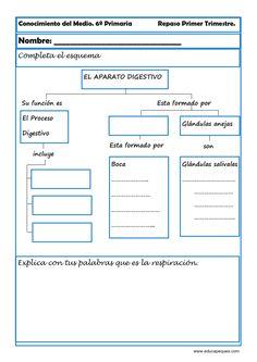 Indice de contenido1 Recursos para el aula: Conocimiento del medio sexto de primaria1.1 Fichas de conocimiento del medio sexto de