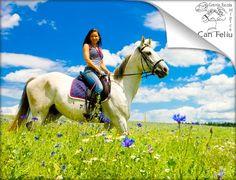 1 hora de paseo a caballo 12€