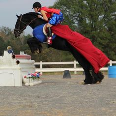 Super Horse, super Vanner..…photo by Kathy Yore! Beth, and Shadow, what a team!!!!