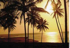 Maragogi beach, Alagoas, Brazil