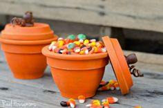 DIY Pumpkin Terracot