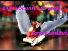 BIRDS OF PARADISE~PASARILE PARADISULUI~FIITUINSUTIMAA