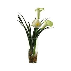 "White Calla Lilies 27 1/2""H Faux Flowers in Glass Vase (8.930 RUB) ❤ liked on Polyvore featuring home, home decor, glass home decor, modern home accessories, modern home decor, white home decor and white home accessories"