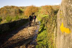 El Camino de Santiago de Compostela - The Way of Saint James