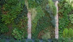 Groengevel in patiotuin.© Ecoworks
