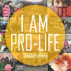 pro-life  --  LiveAction.org