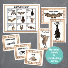 EEEK! Bats! This dramatic play bat cave is perfect for your fall dramatic play or Halloween dramatic play area. Preschool, prek, and kindergarten students will love learning all about bats with this bat inspired dramatic play center. Let them buy tour tickets, search for bats, and record their findings. The bat cave dramatic play center is a great addition to a fall theme or Halloween theme or study on bats. Imaginations will sore with these creative play printables and a few extra items. Halloween Theme Preschool, Preschool Crafts, Halloween Themes, Dramatic Play Area, Dramatic Play Centers, Spring Theme, Autumn Theme, All About Bats, Vocabulary Cards