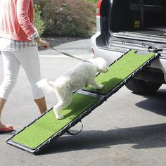 Strong yet lightweight, this folding dog ramp is easily transportable. The secret to the light, slim profile is the sturdy internal metal frame. The entire ramp weighs just 14.8 lbs and will easily fit in the back of most medium-sized SUVs. This ramp is easy for dogs to use, because the poly grass surface helps them get a secure grip for safety. Underneath, non-skid pads grip and protect your bumper. A clip can be attached to the car for added security. 250 lb. capacity. Imported. <br…