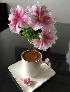 Brane Zupan on vipsociety Coffee Latte, Coffee Set, Coffee Break, Coffee Time, Coffee Cups, Tea Cups, Tea Gif, Good Morning Coffee Gif, Turkish Coffee