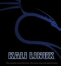kali linux, metasploit, crypt cat, net cat, owasp, havij, wikto, nikto, netsparker, sandcat, google hacks, google exploit database,  nirsoft, tor, putty, paros, burpsuite, wireshark, cain and able, httrack, andiparos, zenmap, nmap, fing, hijetter, proxystrike, sting dos,bidiblah, spud, firefox add ons, core impact, nessus, nexpose,  etc