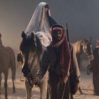 أجل نحن الحجاز ونحن نجد By Reema A B On Soundcloud Horses Animals