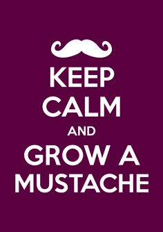 Keep calm and grow a mostache