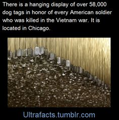 58,000 dog tags in honor or every American soldier who was killed in the Vietnam war, located in Chicago.