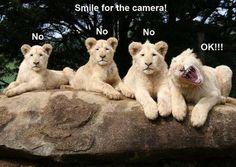 Sonríe a la cámara por favor!