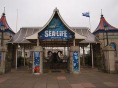 Brighton Streets & Sights..SeaLife centre..