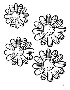 Daisy Girl Scout Program